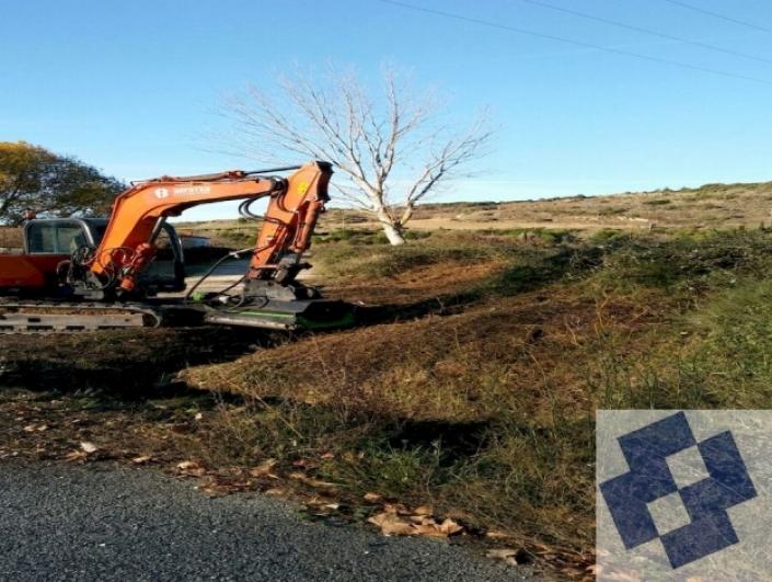 Limpieza caminos y cunetas